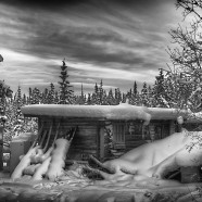 Christmas in the Yukon