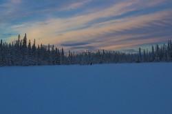 Yukon Xmas 2012 - Dog running on the pond 1